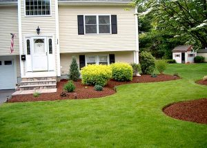 New Lawn & Mulching