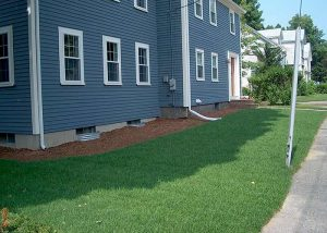 New Lawn & Foundation Plantings